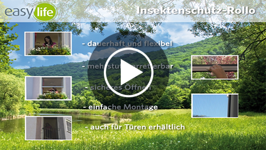 Informationsvideo